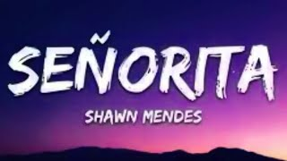 Shawn Mendes - Señorita  ft.Camila Cabello (Lyrics)