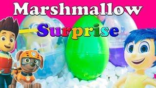 SURPRISE EGGS Disney Frozen+ Nickelodeon Paw Patrol + Blaze Marshamllow Surprise Eggs Video