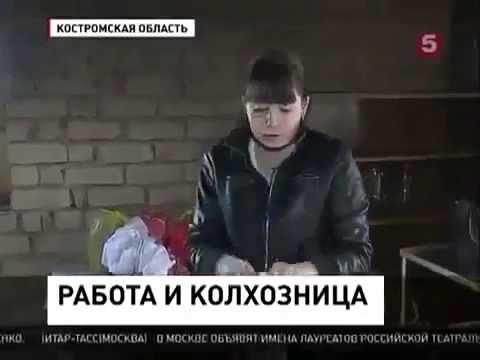 Колхоз в Костромской области стал приносить прибыль