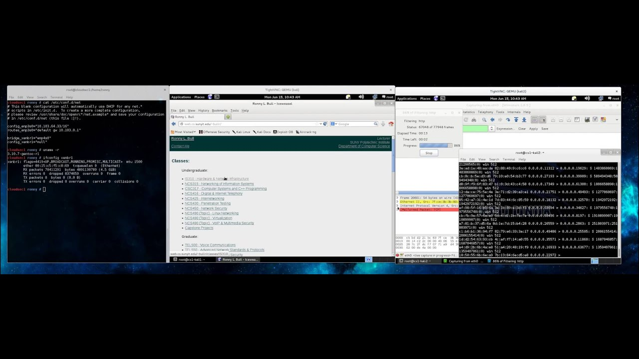 DefCon 23 Video Demo: MAC Flooding on Gentoo/Xen with 802 1d