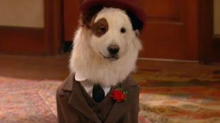 Собака точка ком (Сезон 2 Серия 9)