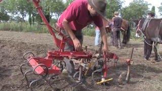 Grande foire de la petite agriculture 2015 Focus traction outils
