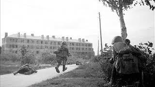 Война на Левом берегу Воронежа  1942 год
