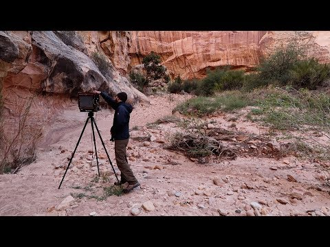 Colorado Plateau 2017: (Day 7) Shooting 3 Subjects on 8x10 Slide Film in Capitol Reef