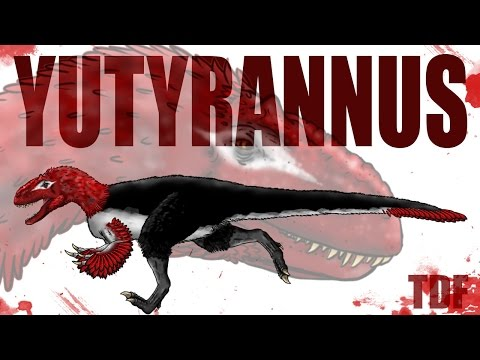 Yutyrannus The Feathered Tyrant (TDF Facts)