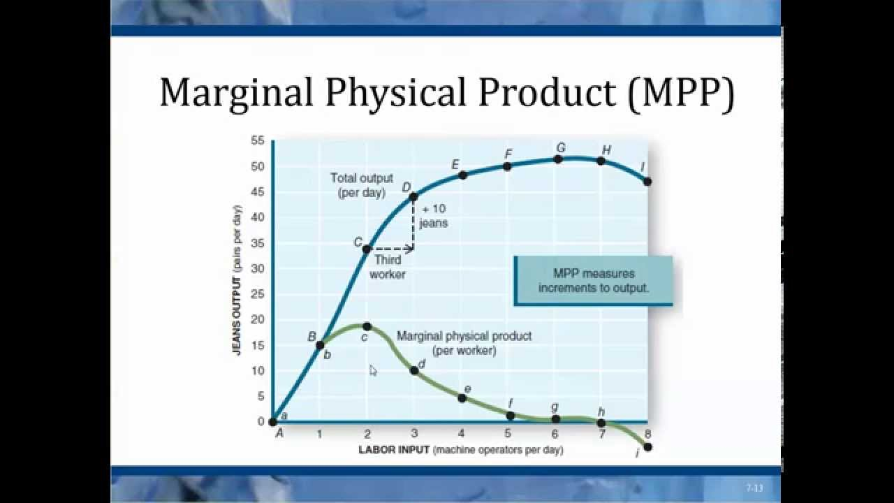 Chapter 7 Marginal Physical Product - YouTube