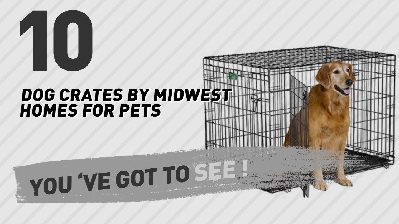 dog crates by midwest homes for pets top 10 most popular