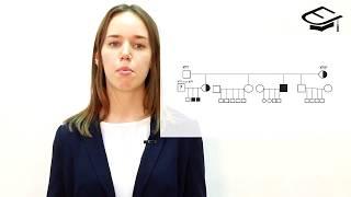 ЕГЭ по биологии. Генетика и решение типовых задач