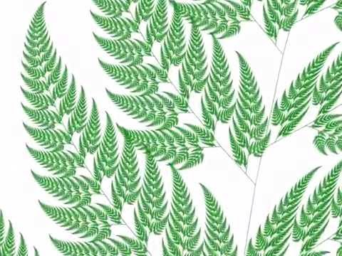 Barnsley Fern infinite zoom (self-similar fractal fern)