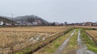 JR西日本 IRいしかわ鉄道 1月23日撮影記録
