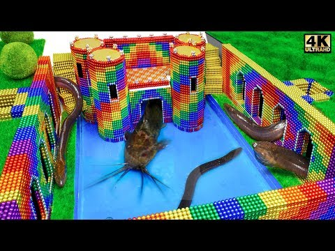 Build Underground Castle, Swimming Pool For Catfish and Eel From Magnetic Balls ( Satisfying ) |