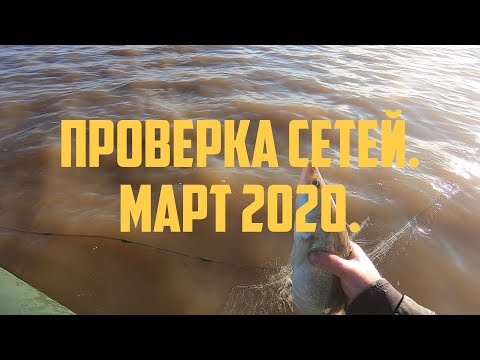 Проверка сетей, март 2020, часть 1.   Fishing with nets 2020