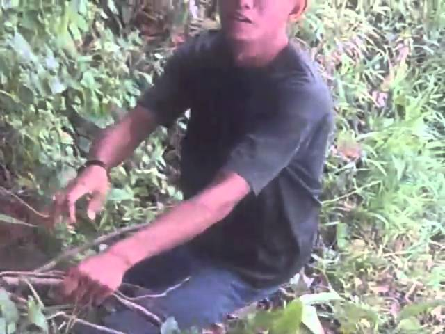 mancing Mania inhu Travel Video