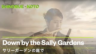 Down by the sally gardens - Shinobue