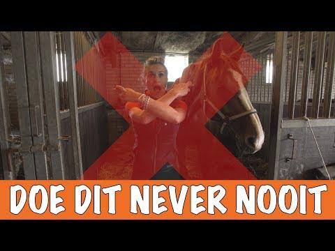 DOE DIT NEVER NOOIT! | PaardenpraatTV