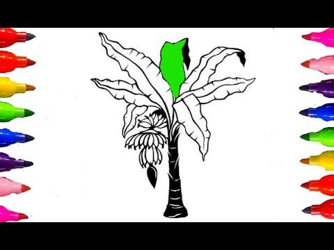 coloring pages banana tree fruits how to draw and color kids learning colored markers - Images To Color For Kids