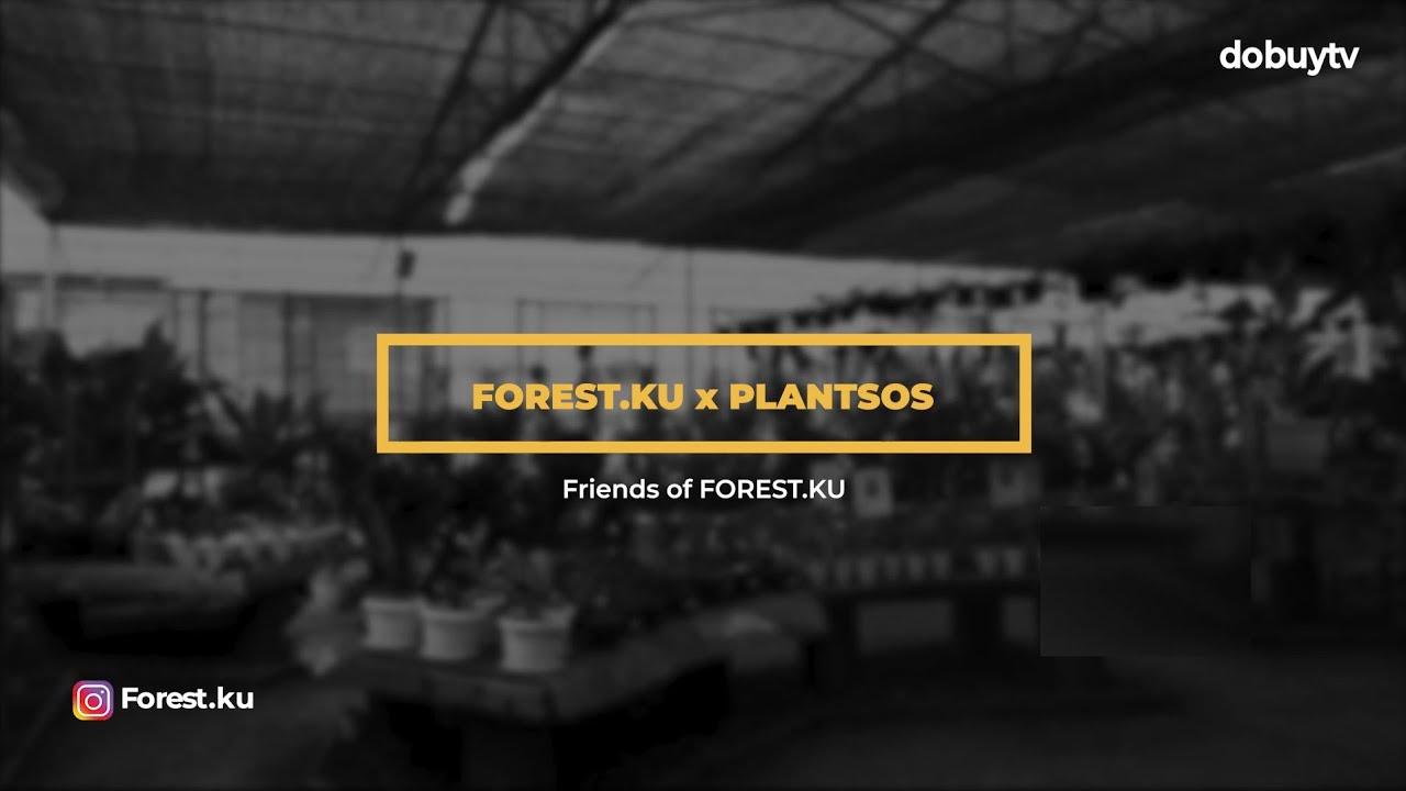 Buka Bersama FOREST.KU X PLANTSOS