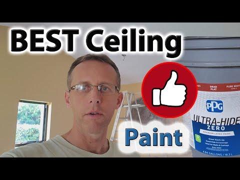 Best Ceiling Paint PPG DEAD FLAT