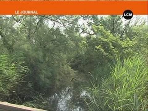Le Marais du Vigueirat classé réserve naturelle nationale