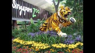 Green Parkroyal Singapore, Singapore Zoo. Зеленый отель. смотреть всем.(, 2016-05-11T15:53:20.000Z)