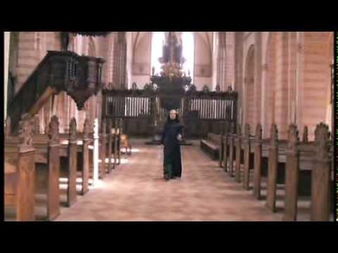 Storkongens Arving - hele filmen
