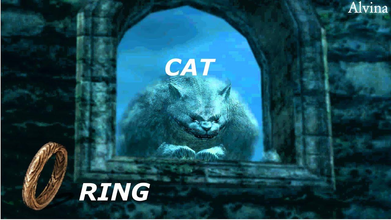 Кот дарк соулс