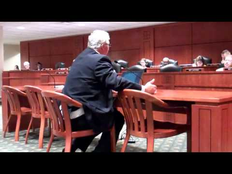 2013 Kevon Martis Testimony re:PA 295 before MI House Energy and Tech Committee