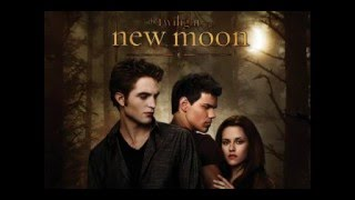 My New Moon Soundtrack (Track 2): All Fall Down by One Republic