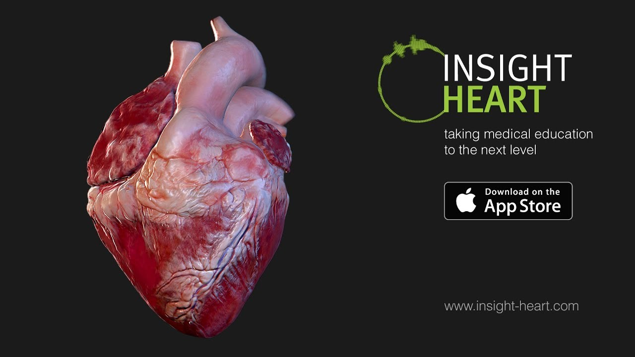 Insight heart the human heart expedition youtube insight heart the human heart expedition ccuart Choice Image