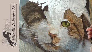 Cat in Acrylics Time-lapse Painting