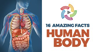 15 Strange Facts about Human Body that you may not be aware of  #TRF 03