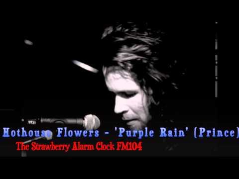 Hothouse Flowers  Purple Rain Strawberry Alarm Clock  FM104