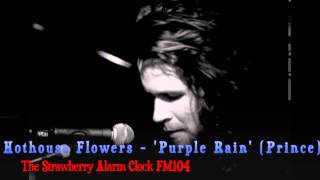 Hothouse Flowers -