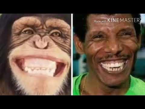 G/Art. Umar Suleyman* Bilisummaa Barbaannaan* Oromo Music