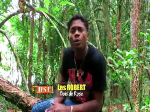 LES ROBERT /// BOIS DE ROSE [ CLIP GASY ]
