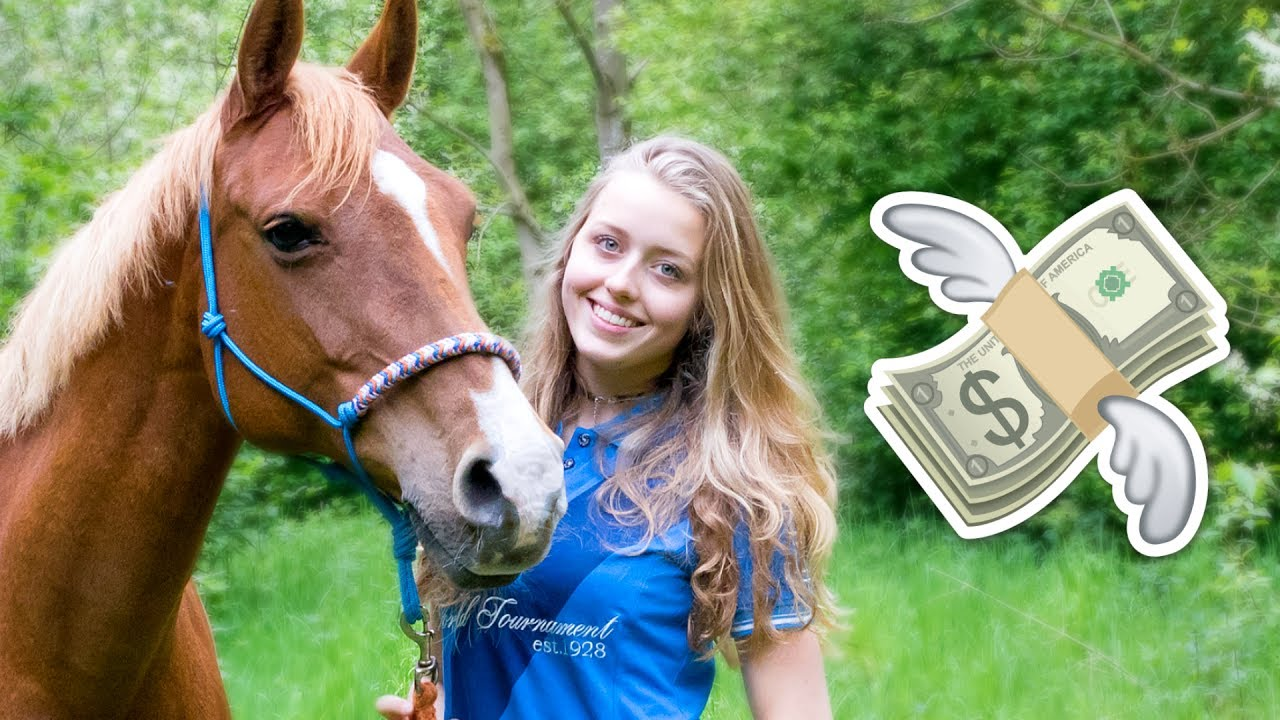 Hoeveel kost een paard gemiddeld youtube for Hoeveel kost zwemvijver