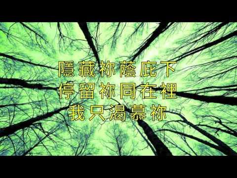 生命氣息(CHC)中文版