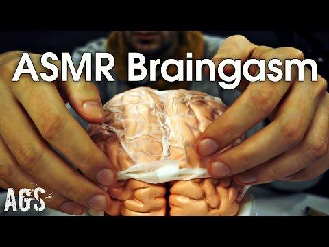 ASMR BRAINGASM (AGS)