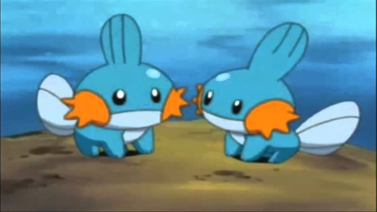 Mudkip the Mud Fish Pokemon - YouTube