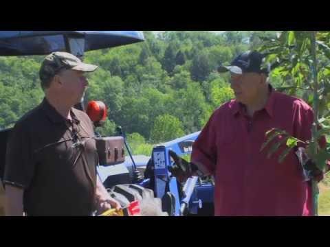 Woods N Water Tv - Planting Chestnut Trees