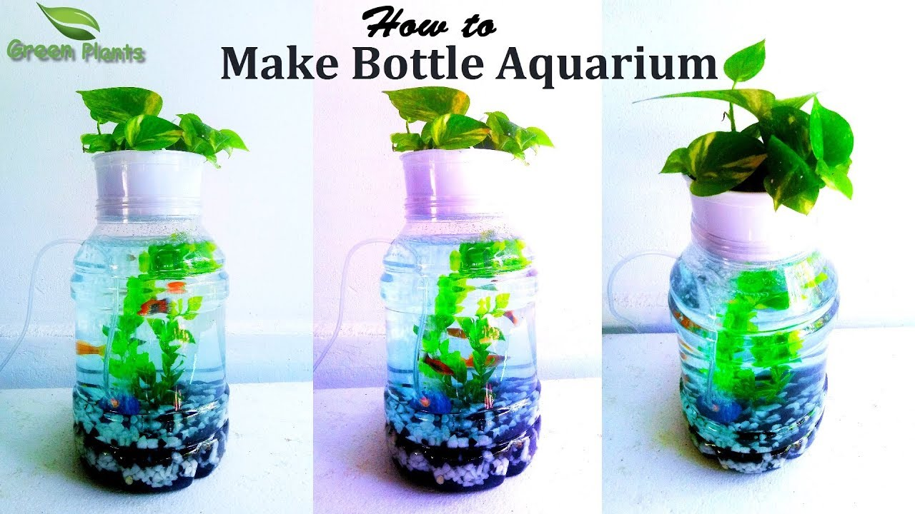Bottle Aquarium | How to Make Plastic Bottle Aquarium | Small Aquarium With  Fish//GREEN PLANTS