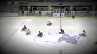 Сильнее обстоятельств сборная команда России по следж хоккею
