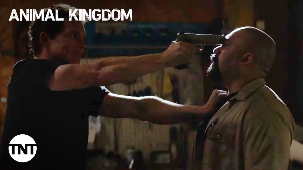 """Download Animal Kingdom: Pope finds the truth about Pete """"flushing"""" coke - Season 5, Episode 12 [CLIP] 