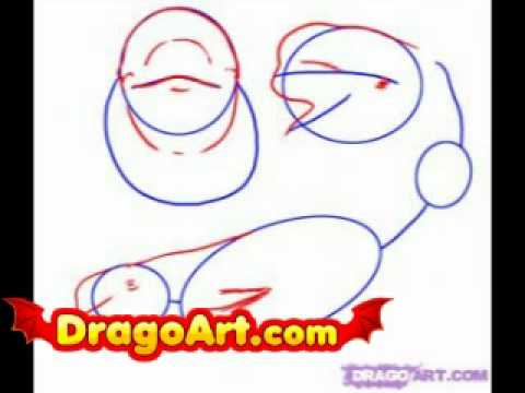 how to draw a beluga whale step by step