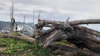 Jewel Basin Yurt | Montana Bachelorette Trip