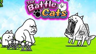 KOT RYBA VS GORYL!   THE BATTLE CATS #admiros