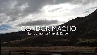 Cóndor macho - Marité Berbél