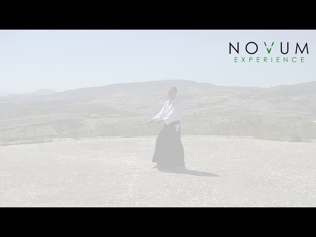 05 Tsuki Jodan Gaeshi Uchi-Aikido Novum Experience-Jo Suburi Nijuppon-突き上段返し打ち-合気道 杖素振り20本 -突き5本