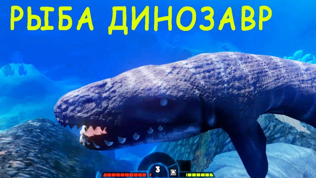 Feed and grow fish for Feed and grow fish free no download