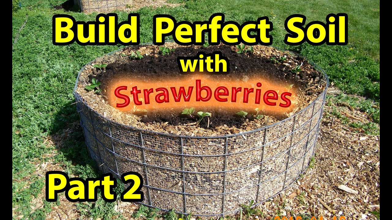 How To Build Nature S Healthy Soil In Raised Wood